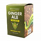 Brew Your Own Ginger Ale Kit