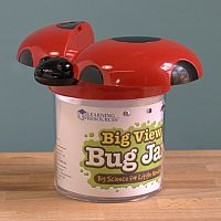 Big View Bug Jar