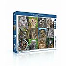 1000 Piece Puzzle, Owls and Owlets