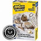 Real Fossils Excavation Kit
